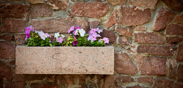 Hanging Flowers: Flower Box in Stone Wall