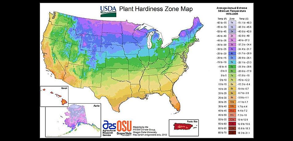 Zone Gardening Part - 15: USDA Zone Map For Water Gardens Garden Ponds US Hardiness Zones - Us  Planting Zone Map