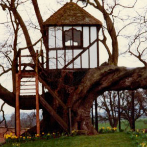 Awesome Treehouse (image: David Pitchford)