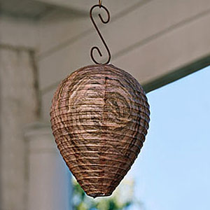 Backyard and Patio - Natural Wasp Deterrent