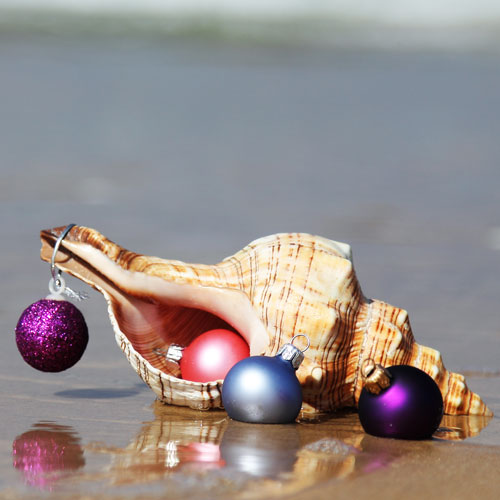 christmas ornaments, beach, seaside, ocean, christmas decoration, holiday decorations, seashell decoration