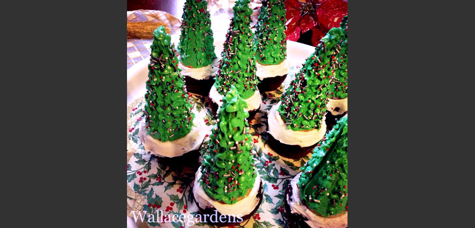 Holiday and winter gardening ideas bombay outdoors winter gardening winter gardening ideas christmas cookies christmas cupcakes christmas baking workwithnaturefo