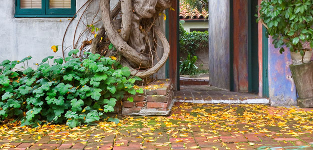 fall, autumn, brick patio, patio, leaves, autumn leaves, fall leaves, cleaning, sweep, cleaning tips, chores