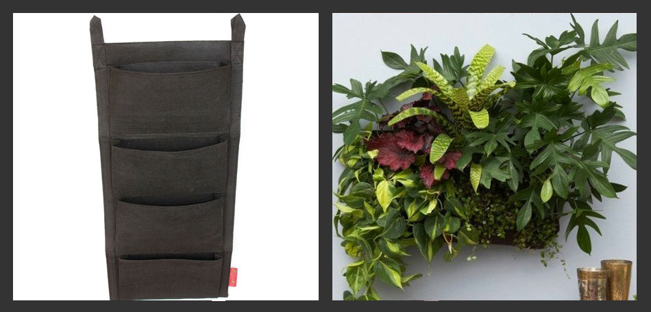 vertical gardening, felt wall planter