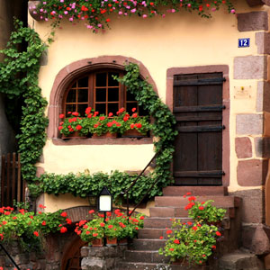 Places To See: Places To Visit, Countries, Favorite, Inspiring, Bombay Outdoors, France, Village, Home, Flowers, Alsace
