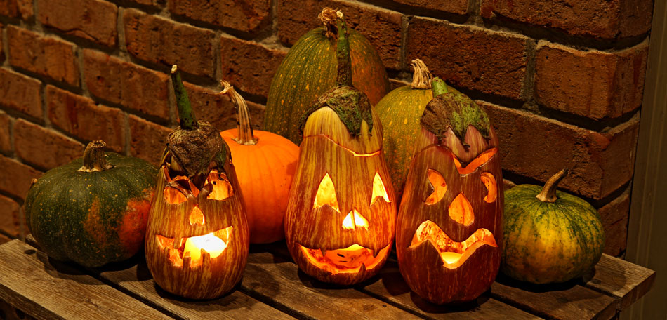 halloween, eggplant, halloween decorations, Jack o' lantern, jack o lantern, Jack-o'-lantern, porch, decor, gourd, front porch, gourds, Jack-o'-lanterns, jack o lanterns, Jack o' lanterns, halloween decor, egg plant, jackolantern, eggplants, halloween decoration, jackolanterns, décor, lanterns