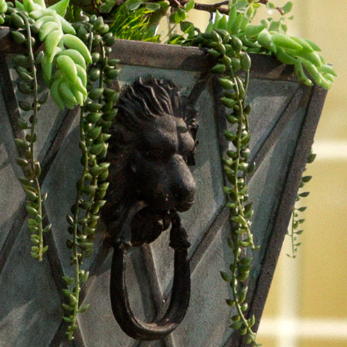 home-entrance-planter