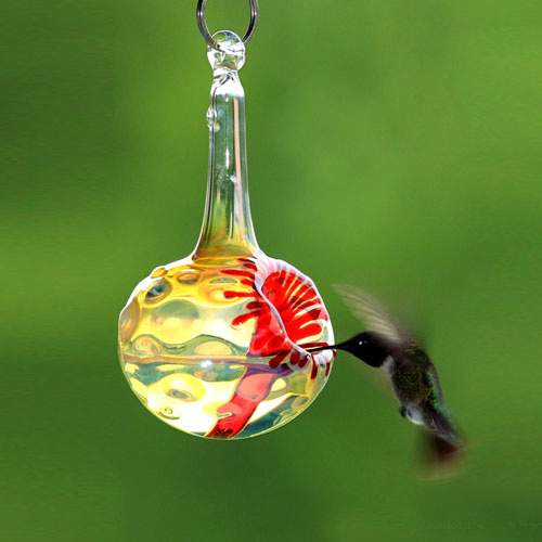 hummingbird, hummingbirds, bird feeder, bird feeders, birdfeeders, birdfeeder, hummingbird feeder, hummingbird feeders, glass, sculpture, outdoor decor, decor, glass sculpture, hanging sculpture, decorative, nectar, sugar water, winter birds, Miami, Houston