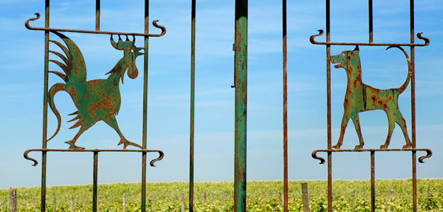 Wrought Iron Animals: Animal Outdoor Décor - Wrought Iron Gate - Portugal - Rooster - Dog