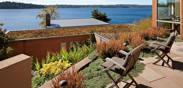 Rooftop Gardens: Ancient Idea - Modern Benefits - Suburban - Lakeside - Rooftop Garden - Patio - Seattle