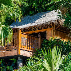 Outdoor Decor: Luxury Treehouse