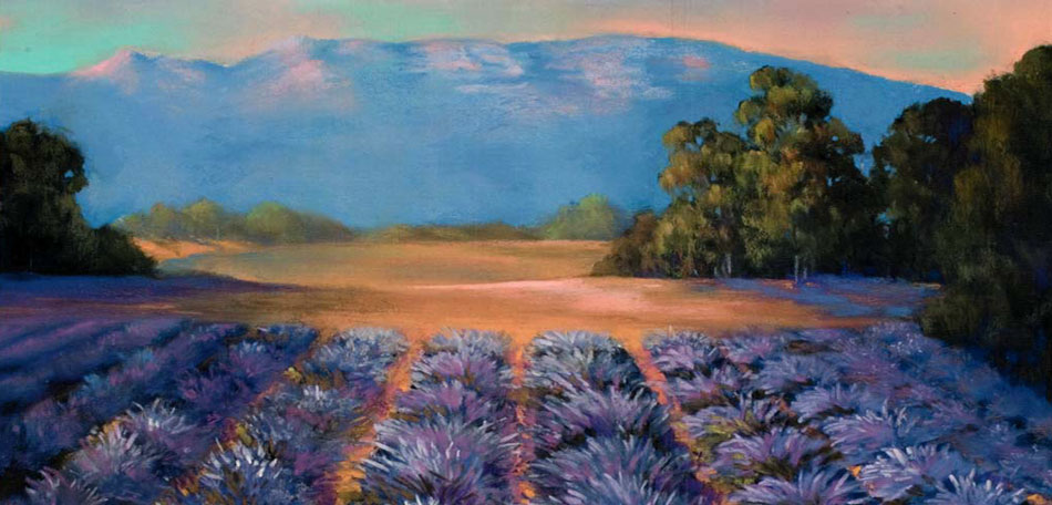 ojai lavender farm, california