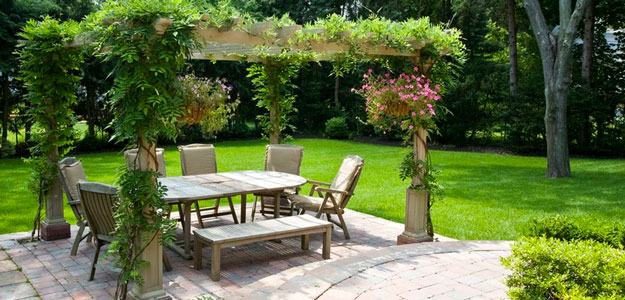 Pergola: Modern, Beauty, Practical, Backyard, Walkway, Gardens - Pergola Patio - Wisteria