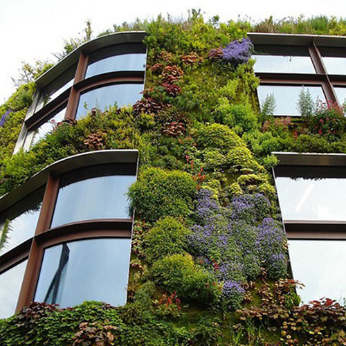 Vertical Garden Wall Outdoors Balconies