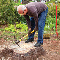 How to Make a Tree Stump Planter: Steps - Creating a Hole - This Old House - Pickaxe - Mattock
