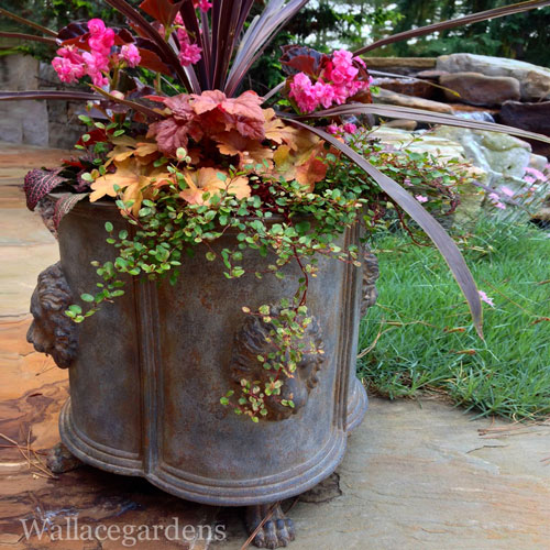 planter ideas, Wallace Gardens