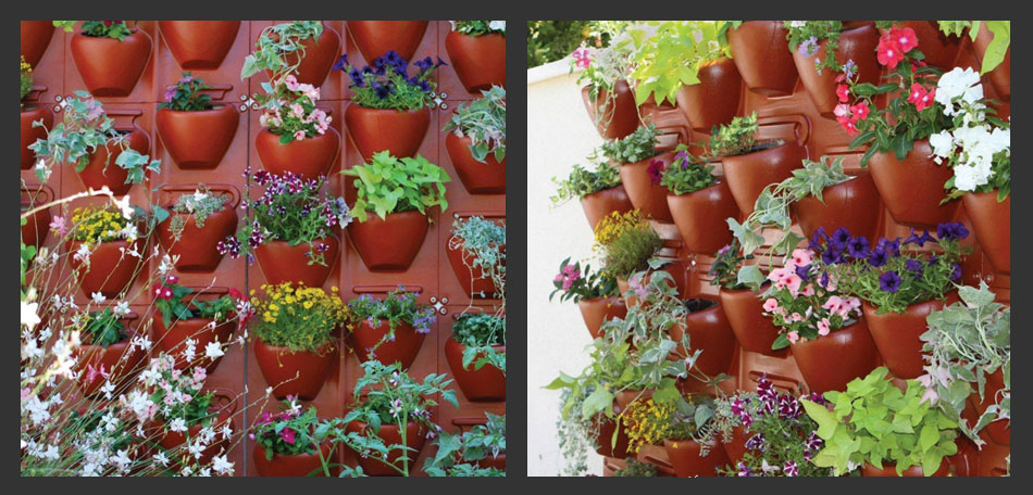 Reinvented Vertical Gardening Grows Up Bombay Outdoors