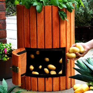 Potato Barrel: How to Grow Potatoes - Primrose Potato Barrel - Potato Barrels - Growing Potatoes in Containers