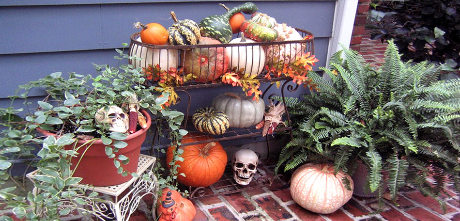 Halloween, halloween decorations, patio, decor, halloween decor, outdoor halloween decorations, pumpkins, gourds, backyard, container gardens, décor, back yard, halloween decorating, outdoors, outdoor, outdoor halloween decoration, pumpkin display, halloween display, halloween décor