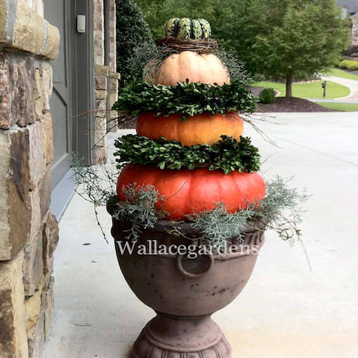 Pumpkin Decorating Ideas: Pumpkin, Pumpkin, Gourd, Gourds, Porches, Decorating, Decorating with Pumpkins, Pumpkin Decorating, Pumpkin Topiary, Topiary, Container, Driveway