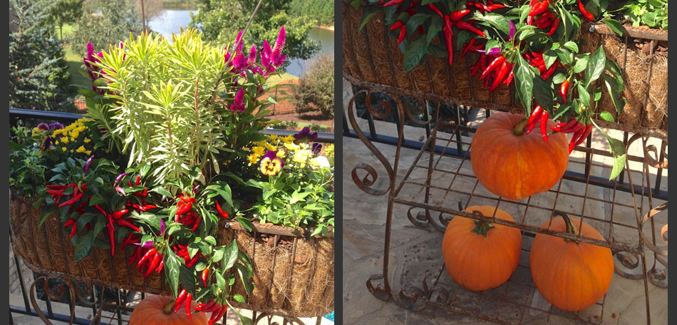 pumpkin topiary plant stand