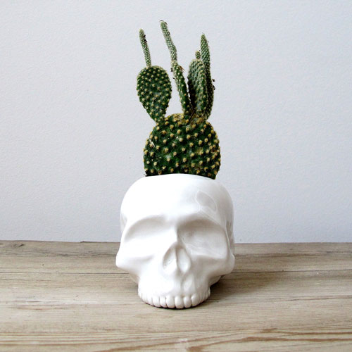halloween, autumn, fall, planters, decor, halloween decor, container gardening, gardening, planter, plant pots, fall decor, garden planters, garden pots, ceramic planters, container garden, fall plants, decorative planters, fall gardening, succulent planter, porch decor, ceramic planter, autumn decor, succulent planters, decorative pots, fall container gardening, cactus planter, fall container garden, decorative plant containers