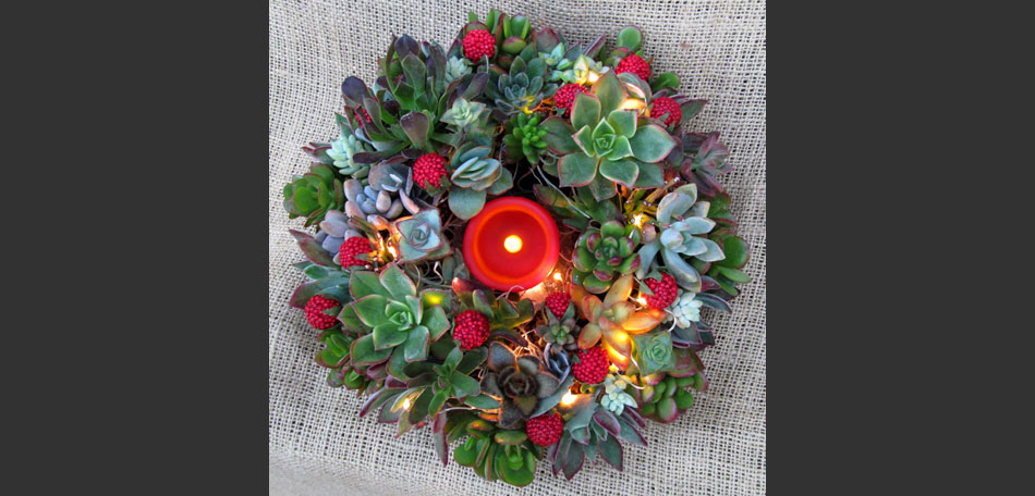 wreath, holidays, holiday wreath, Christmas wreath, succulents, succulent wreath, berries, moss, holiday decorations