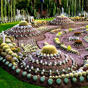 Planting zones 3 things to know bombay outdoors for Cactus garden designs